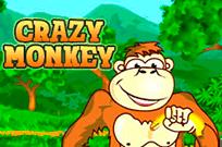 Играть в клубе Вулкан Crazy Monkey