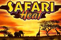 Играть в казино Вулкан Safari Heat